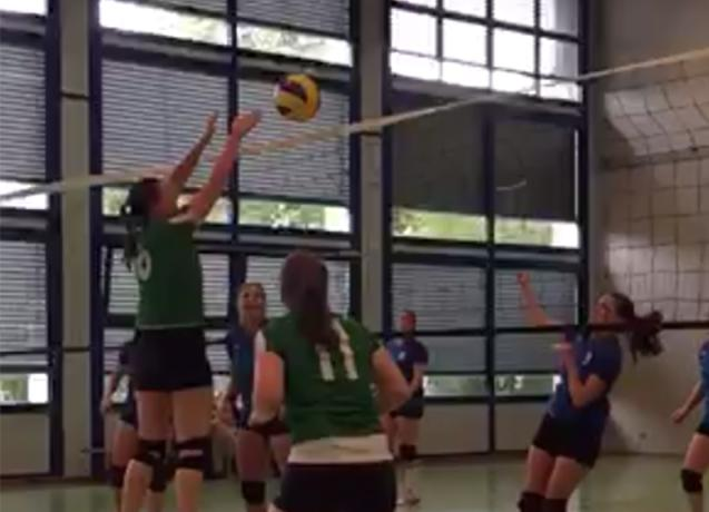 VBC Subingen vs. Damen 1